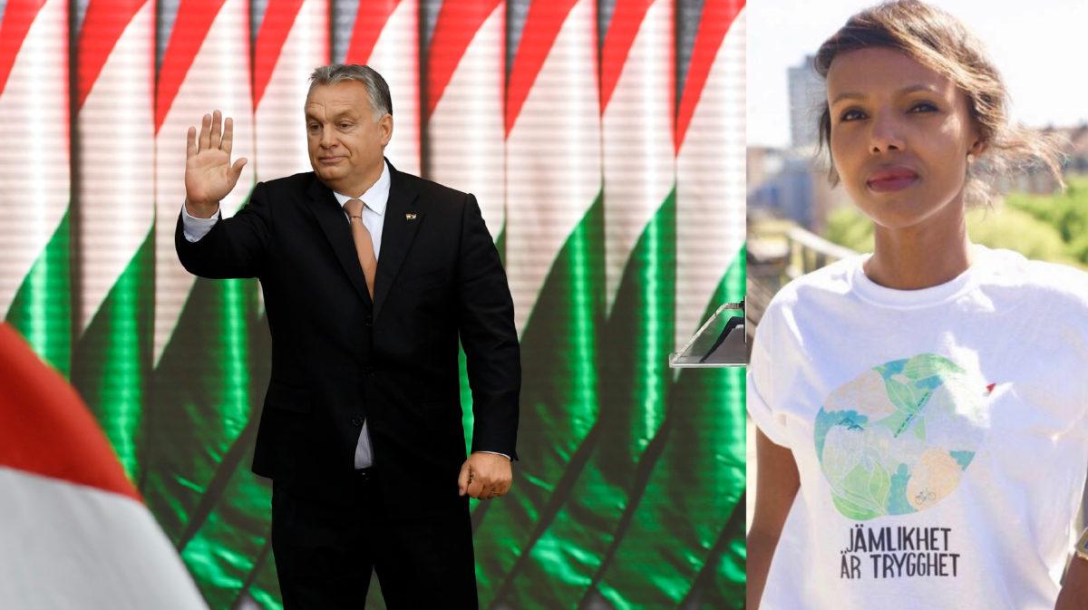 """""""EU måste straffa anti-demokratiska länder som Ungern"""""""